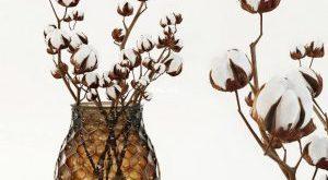 تحميل موديلات  475 Plant نبات