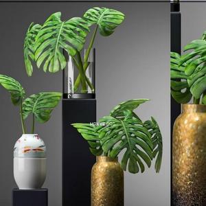 تحميل موديلات  478 Plant نبات