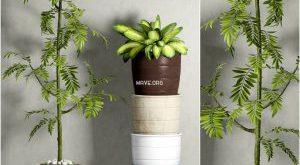 تحميل موديلات  481 Plant نبات