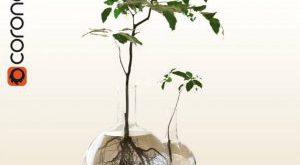 تحميل موديلات  491 Plant نبات