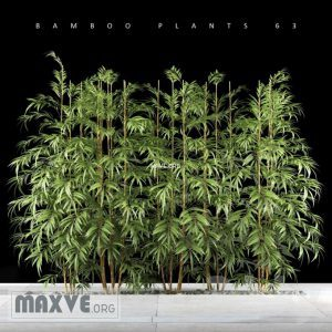 تحميل موديلات  495 Plant نبات