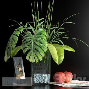 تحميل موديلات  512 Plant نبات