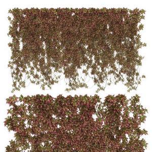 تحميل موديلات  529 Plant نبات