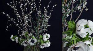 تحميل موديلات  540 Plant نبات
