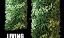 تحميل موديلات  572 Plant نبات