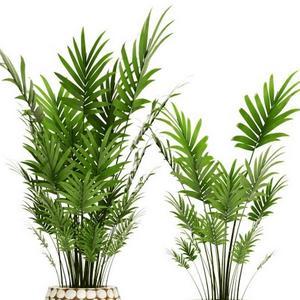 تحميل موديلات  573 Plant نبات