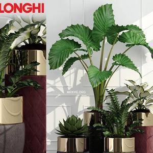 تحميل موديلات  596 Plant نبات